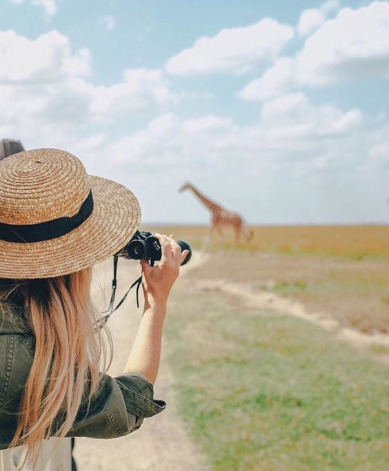 honeymoon planning tips safari