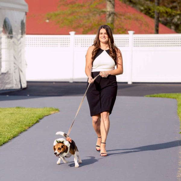 Walking dog down aisle at wedding
