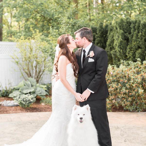 best dog wedding photo