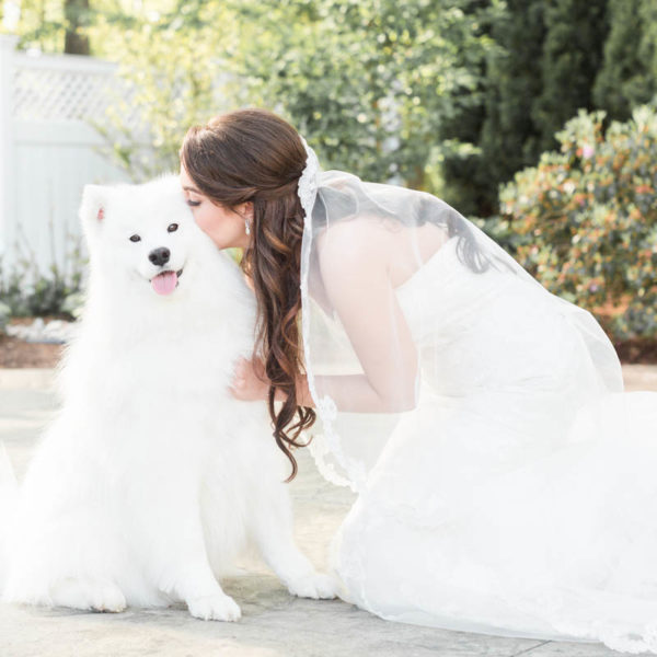 bride with adorable white dog