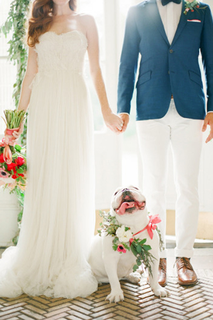 pretty wedding pet photos (3).jpg
