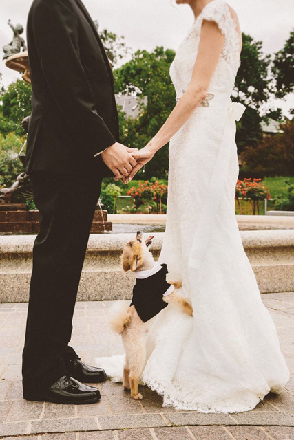 pretty wedding pet photos (7).jpg