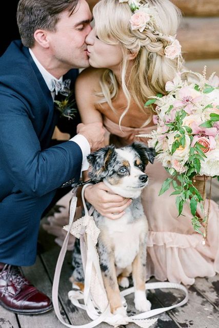 pretty wedding pet photos (5).jpg