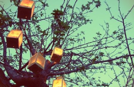 Illuminated Photo Lanterns