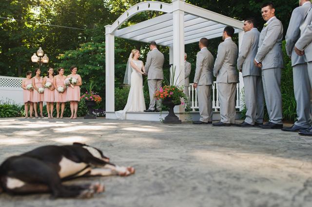 hilarious wedding photos (4).JPG
