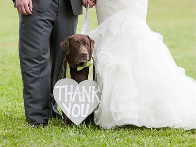 amazing_wedding_thank_you_card_ideas_10.jpg