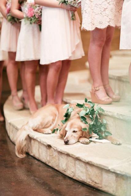 hilarious wedding photos (3).jpg