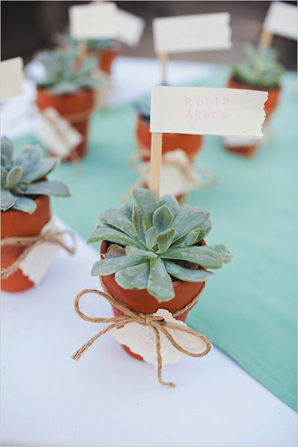 decorating with succulents (1).jpg